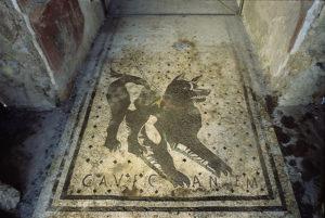 casa-del-poeta-pompei