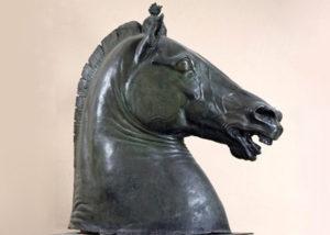 cavallo-4