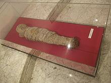 museo arche 28